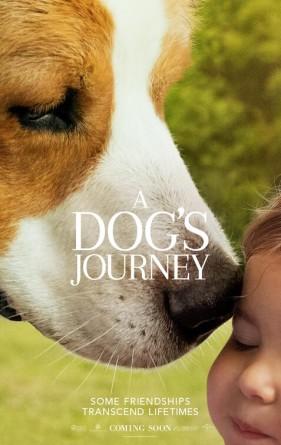 dogs_journey_ver8